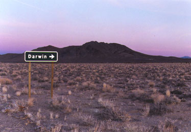 Photo of nifty road sign pointing to darwin, california.